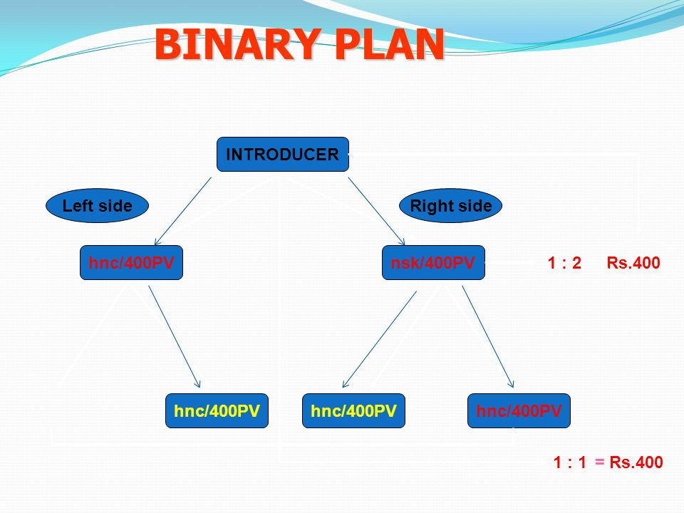 INTRODUCER nsk/400PVhnc/400PV 1 : 2 = Rs.400 hnc/400PV BINARY PLAN 1 : 1 = Rs.400 Left sideRight side