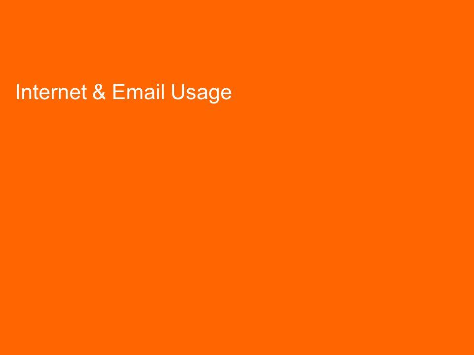 TNS mrbi/136941/Law Society IT Survey/February 2006 12 Internet & Email Usage