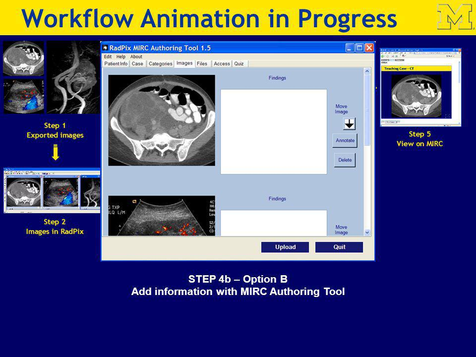 STEP 4b – Option B Add information with MIRC Authoring Tool Step 4b MIRC Authoring Tool Workflow Animation in Progress