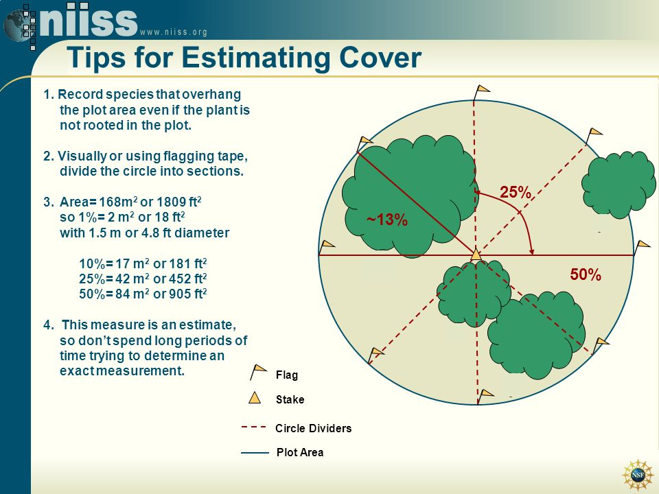 Tips for Estimating Cover Flag Stake Plot Area 1. Record species that overhang the plot area even if the plant is not rooted in the plot. 2. Visually