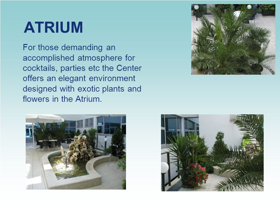 ATRIUM For those demanding an accomplished atmosphere for cocktails, parties etc the Center offers an elegant environment designed with exotic plants