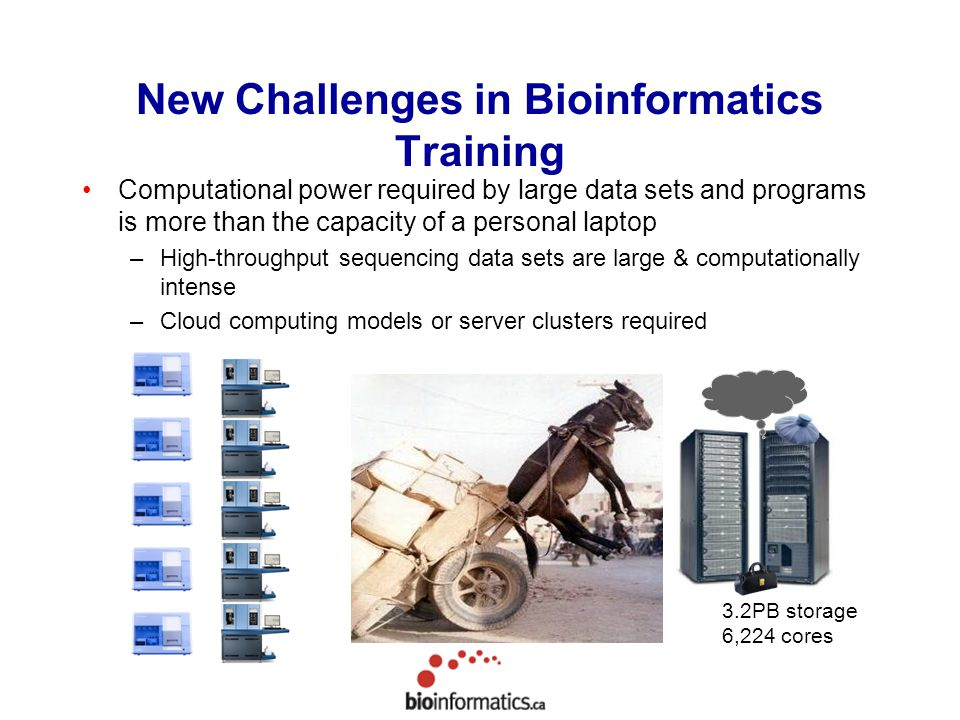 New Challenges in Bioinformatics Training Computational power required by large data sets and programs is more than the capacity of a personal laptop