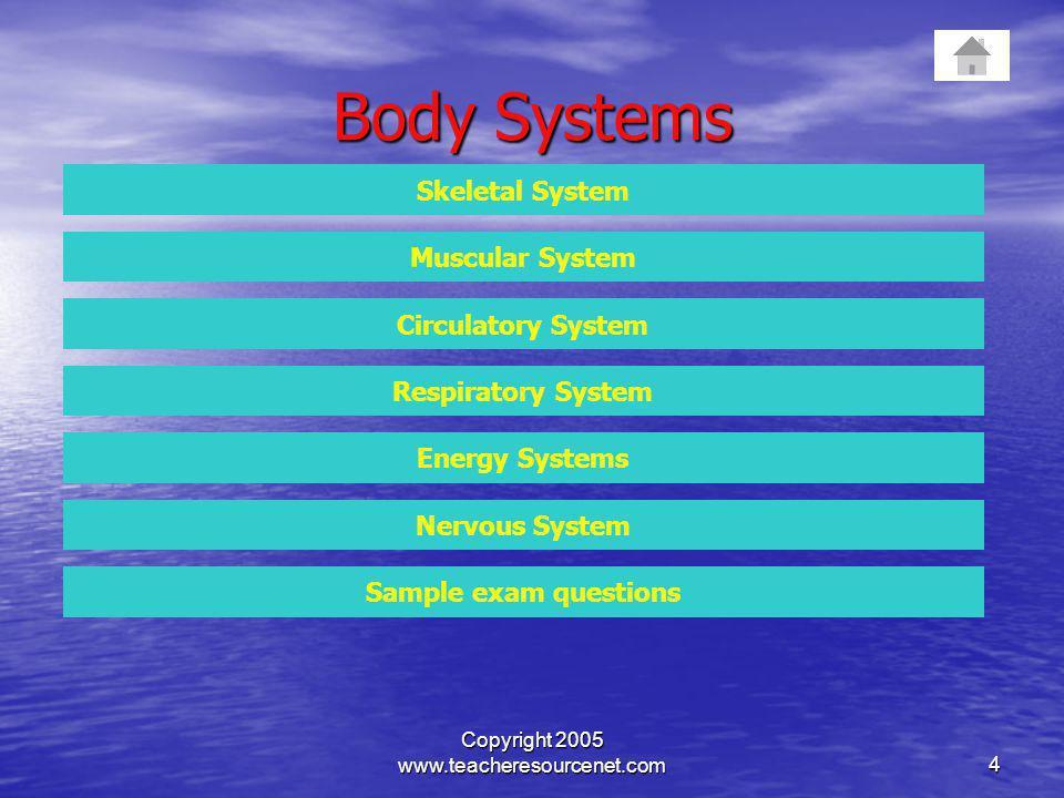 Copyright 2005 www.teacheresourcenet.com4 Body Systems Skeletal System Muscular System Circulatory System Respiratory System Energy Systems Nervous Sy