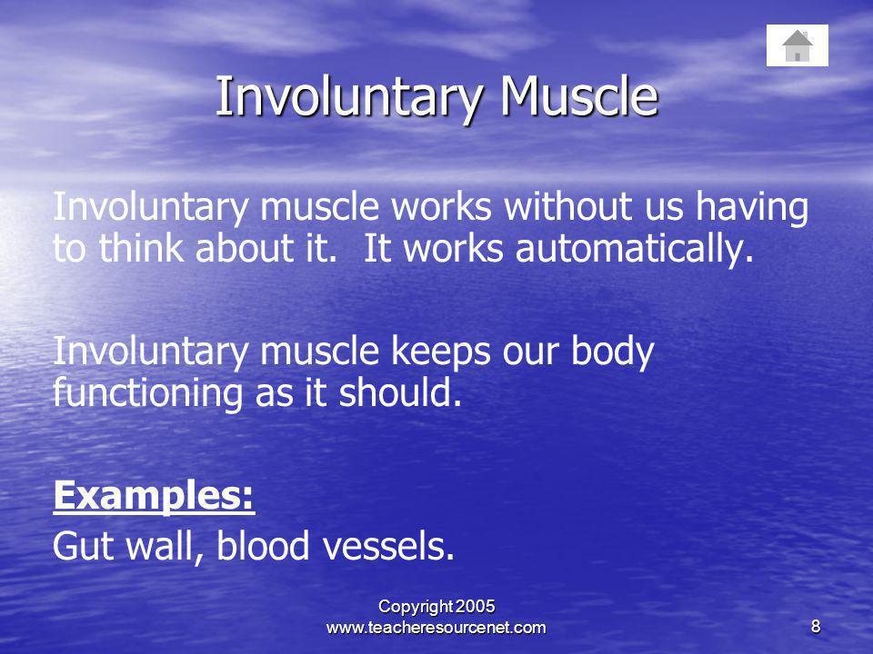Copyright 2005 www.teacheresourcenet.com8 Involuntary Muscle Involuntary muscle works without us having to think about it. It works automatically. Inv