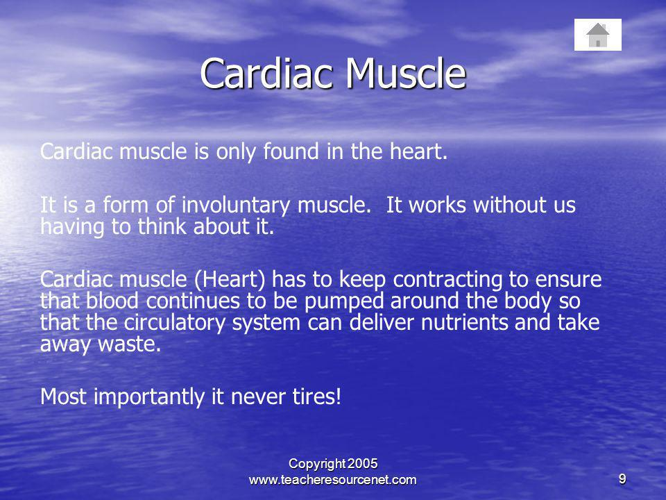 Copyright 2005 www.teacheresourcenet.com9 Cardiac Muscle Cardiac muscle is only found in the heart. It is a form of involuntary muscle. It works witho