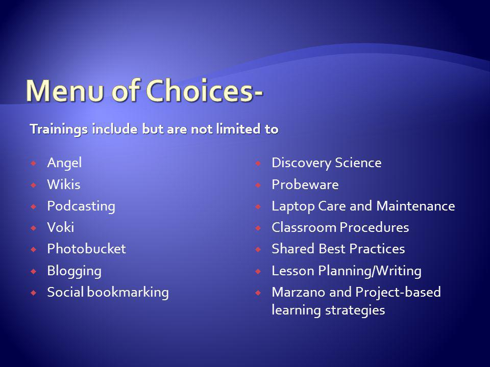 Trainings include but are not limited to Angel Wikis Podcasting Voki Photobucket Blogging Social bookmarking Discovery Science Probeware Laptop Care and Maintenance Classroom Procedures Shared Best Practices Lesson Planning/Writing Marzano and Project-based learning strategies