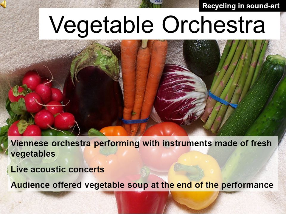 Vegetable Orchestra Recycling in sound-art Viennese orchestra performing with instruments made of fresh vegetables Live acoustic concerts Audience offered vegetable soup at the end of the performance