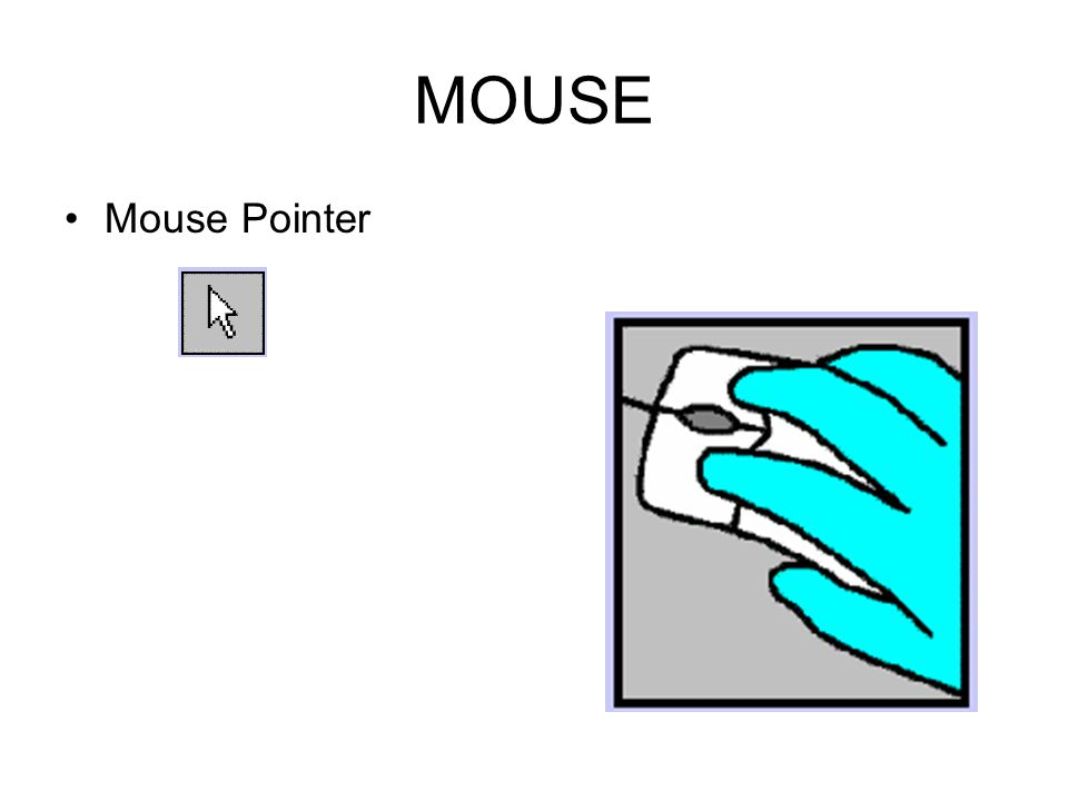MOUSE Holding the mouse Grip between thumb and ring finger (Right handed grip shown, Lefties use other hand)