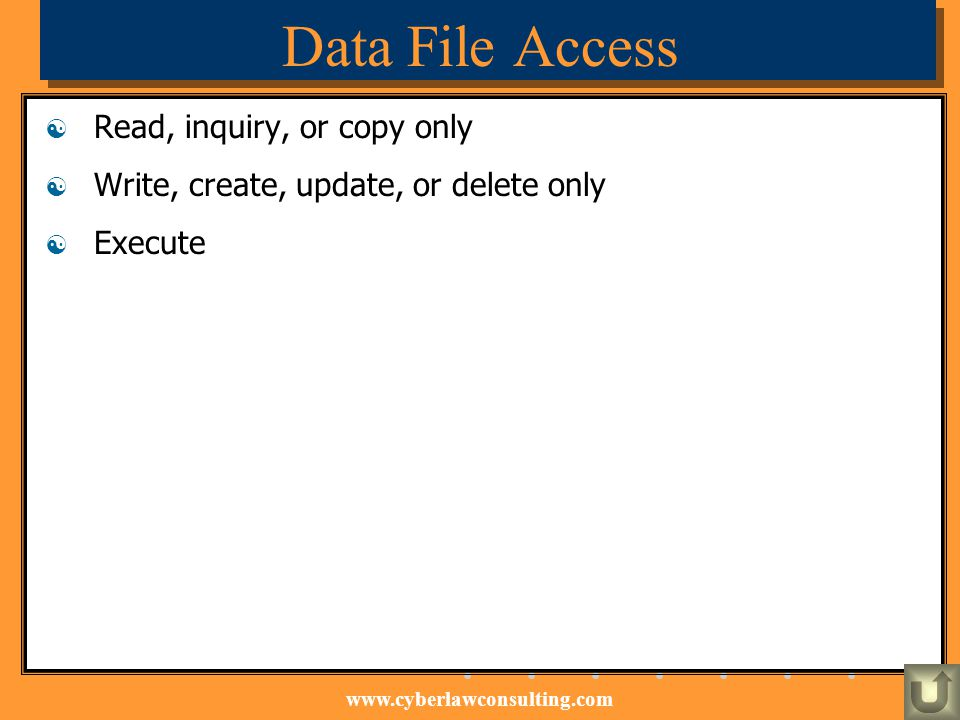 www.cyberlawconsulting.com Data File Access Read, inquiry, or copy only Write, create, update, or delete only Execute