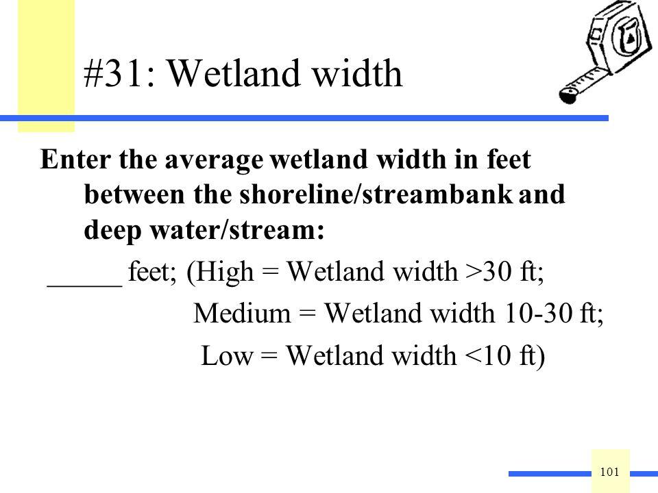 101 #31: Wetland width Enter the average wetland width in feet between the shoreline/streambank and deep water/stream: _____ feet; (High = Wetland wid
