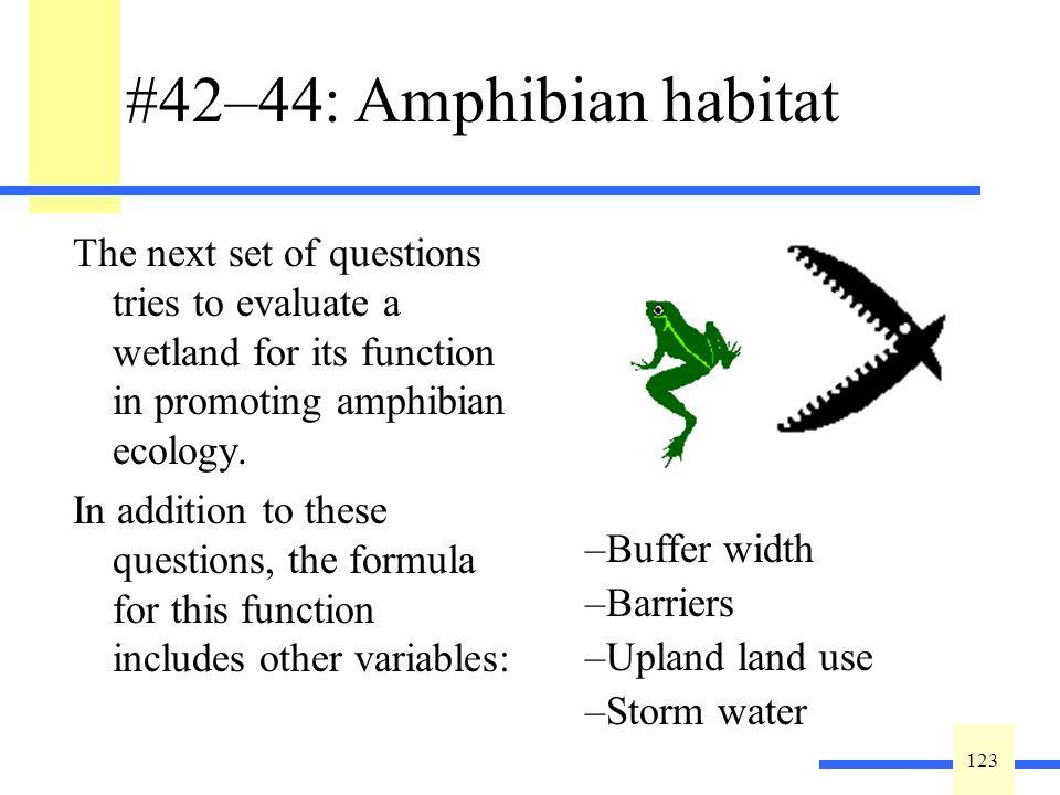 123 #42–44: Amphibian habitat The next set of questions tries to evaluate a wetland for its function in promoting amphibian ecology.