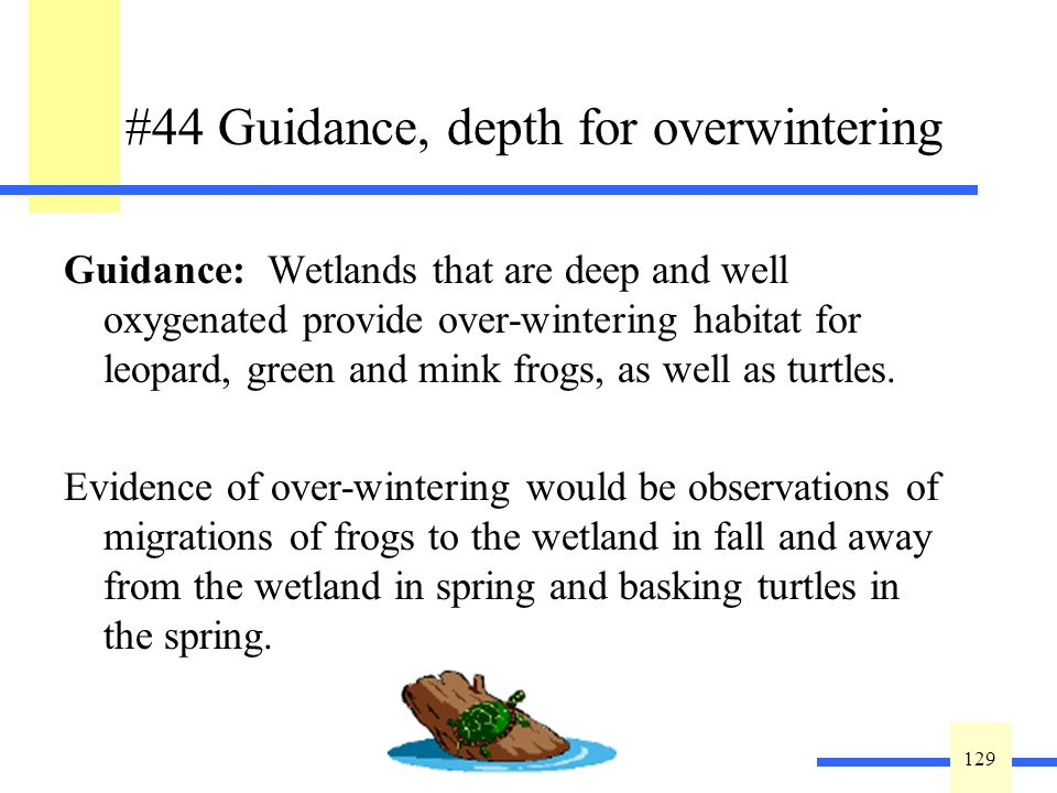 129 #44 Guidance, depth for overwintering Guidance: Wetlands that are deep and well oxygenated provide over-wintering habitat for leopard, green and mink frogs, as well as turtles.