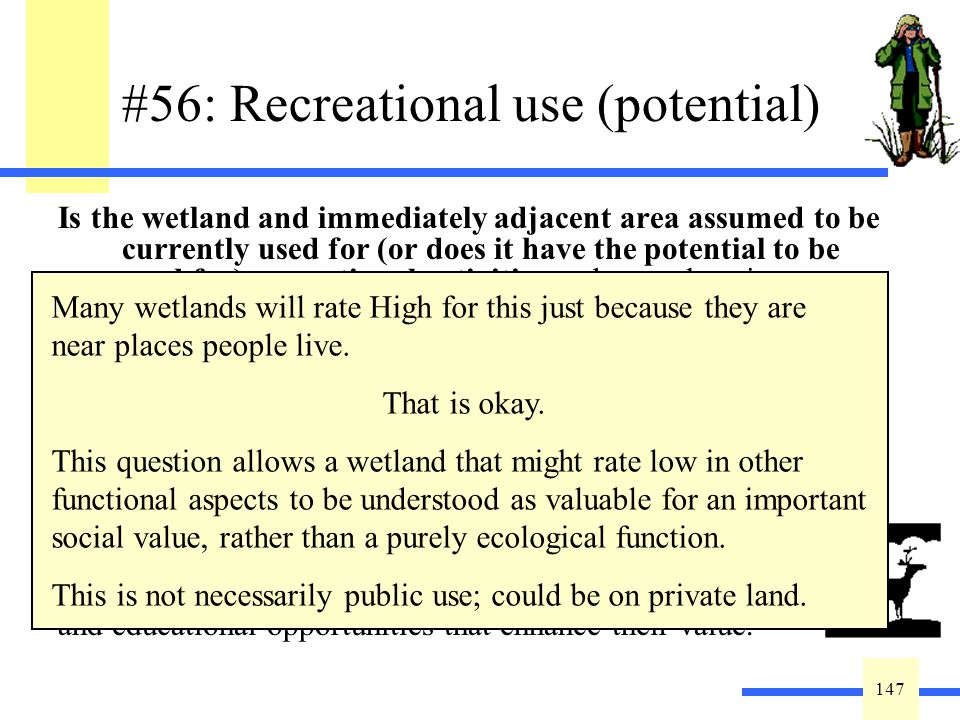 147 #56: Recreational use (potential) Is the wetland and immediately adjacent area assumed to be currently used for (or does it have the potential to