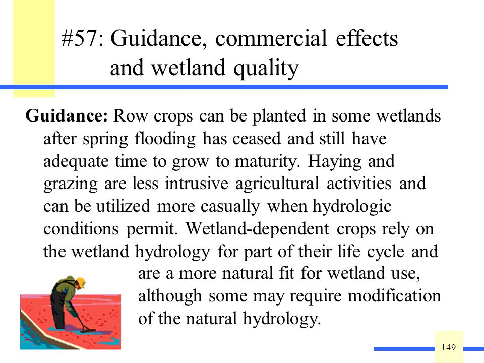 149 #57: Guidance, commercial effects and wetland quality Guidance: Row crops can be planted in some wetlands after spring flooding has ceased and sti
