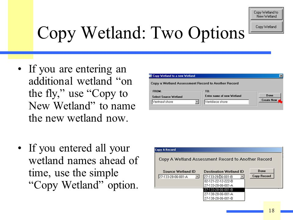 18 Copy Wetland: Two Options If you are entering an additional wetland on the fly, use Copy to New Wetland to name the new wetland now. If you entered