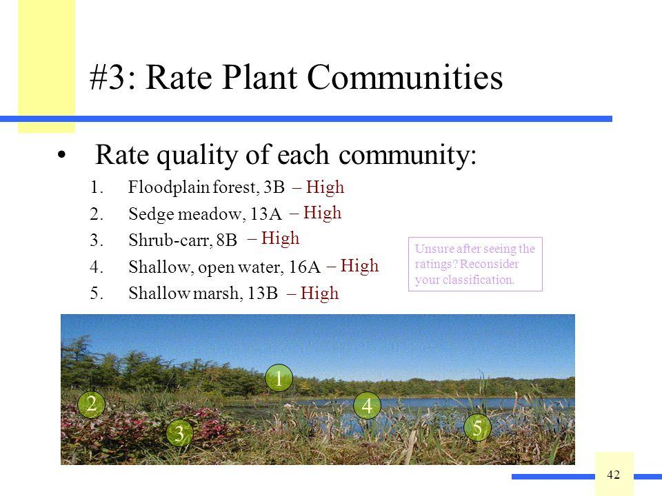42 #1: Identify Plant Communities Key out plant communities: 1.Floodplain forest, 3B 2.Sedge meadow, 13A 3.Shrub-carr, 8B 4.Shallow, open water, 16A 5