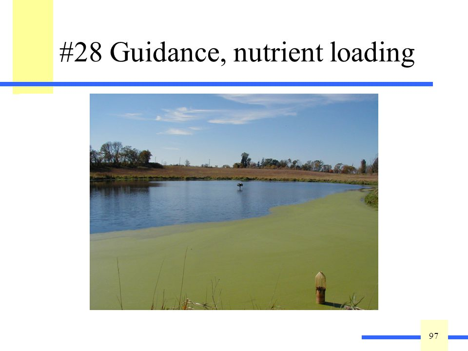 97 #28 Guidance, nutrient loading Excessive nutrient loading to a wetland can cause nuisance algal blooms and the production of monotypic stands of invasive or weed species.