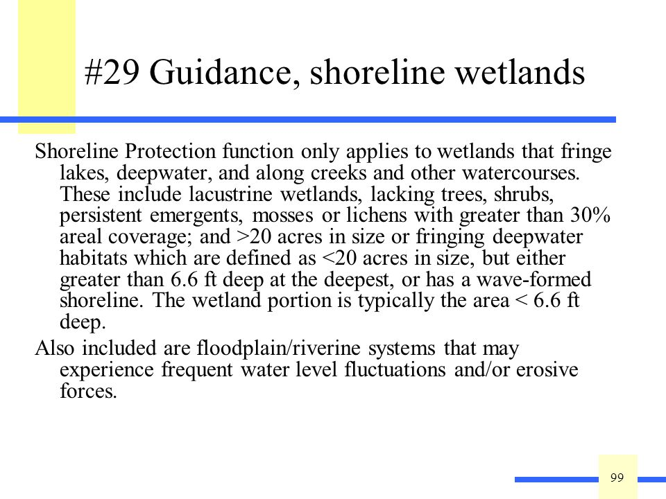99 #29 Guidance, shoreline wetlands Shoreline Protection function only applies to wetlands that fringe lakes, deepwater, and along creeks and other watercourses.