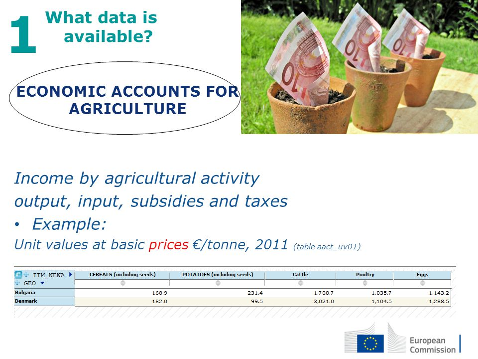 27 April 2012 4 What data is available? 1 Income by agricultural activity output, input, subsidies and taxes Example: Unit values at basic prices /ton