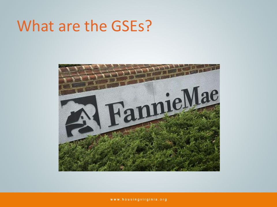 What are the GSEs?