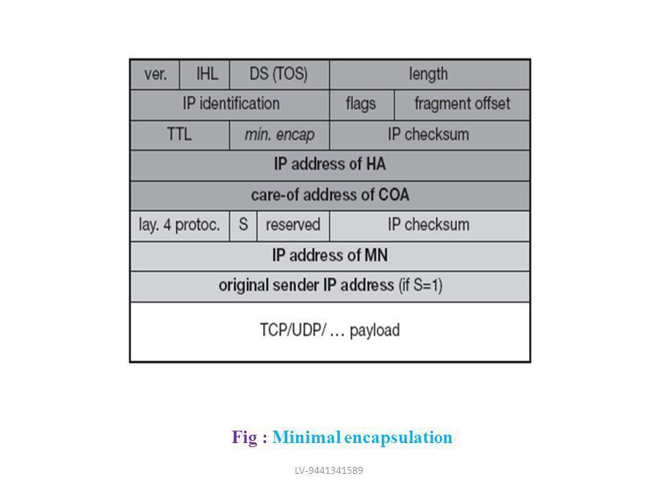 Fig : Minimal encapsulation LV-9441341589