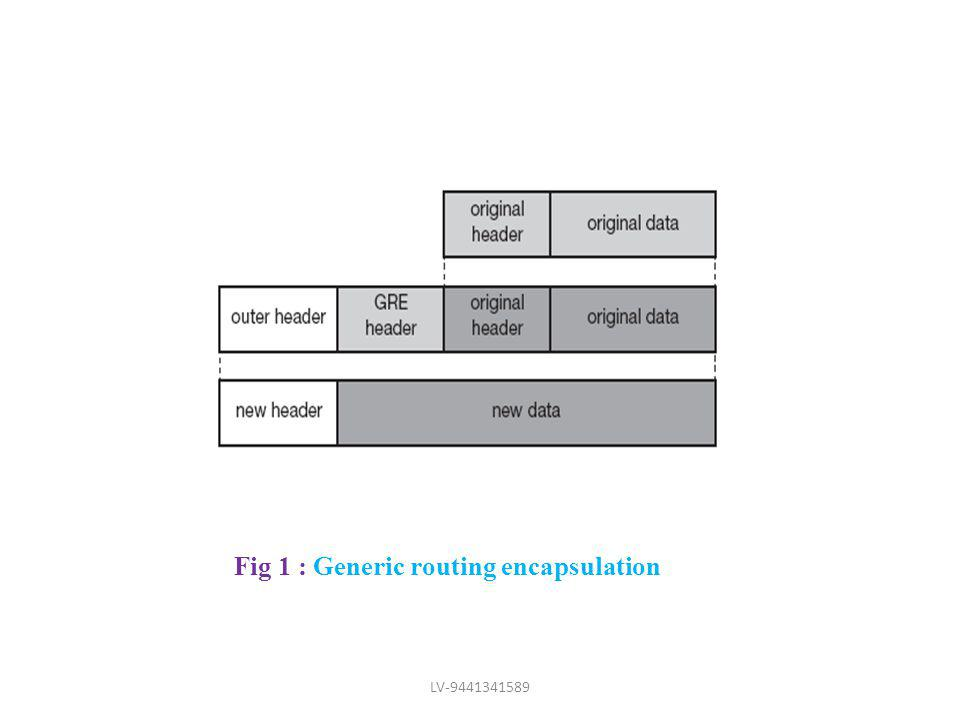 Fig 1 : Generic routing encapsulation LV-9441341589