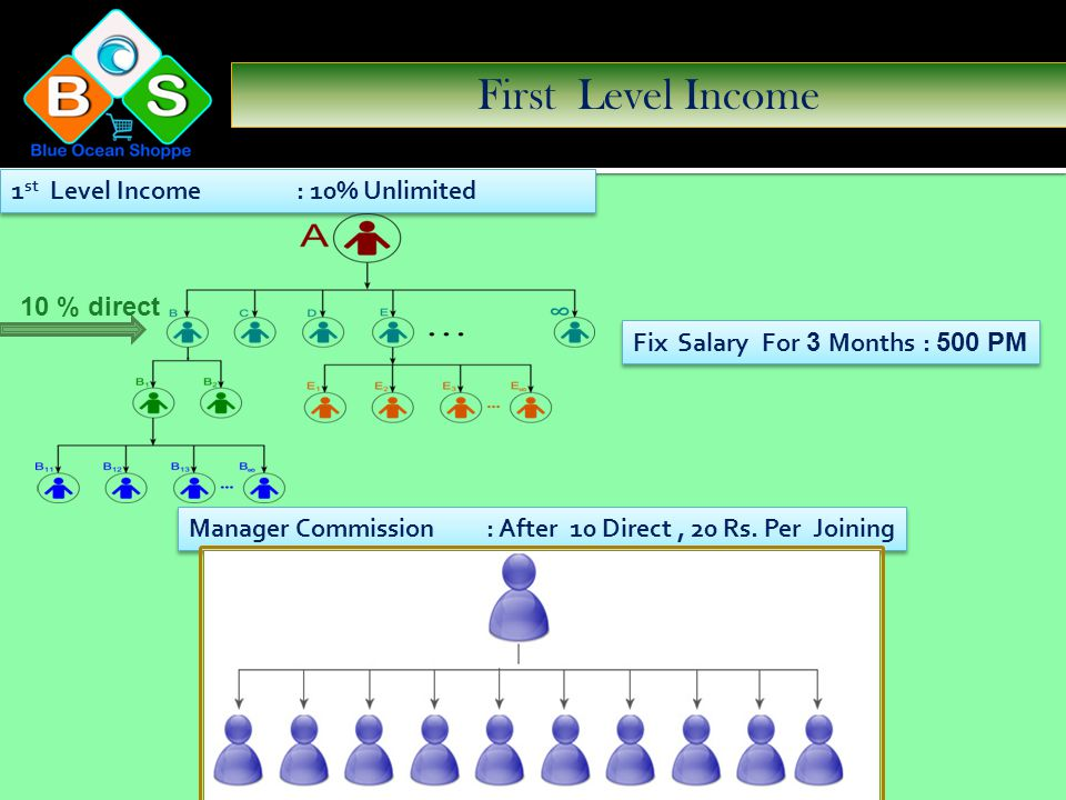 Income Manager Sales Incentive Unilevel Income Fix Monthly Salary Life time Fix Monthly Salary Rewards Repurchase Sales Incentive