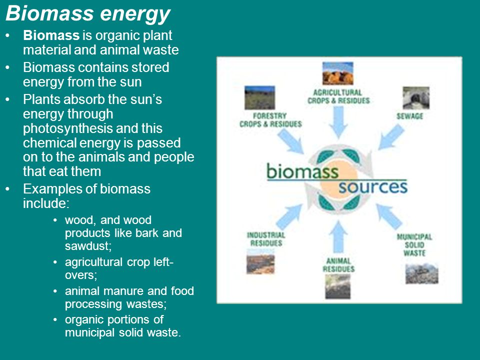 Biomass energy Biomass is organic plant material and animal waste Biomass contains stored energy from the sun Plants absorb the suns energy through ph