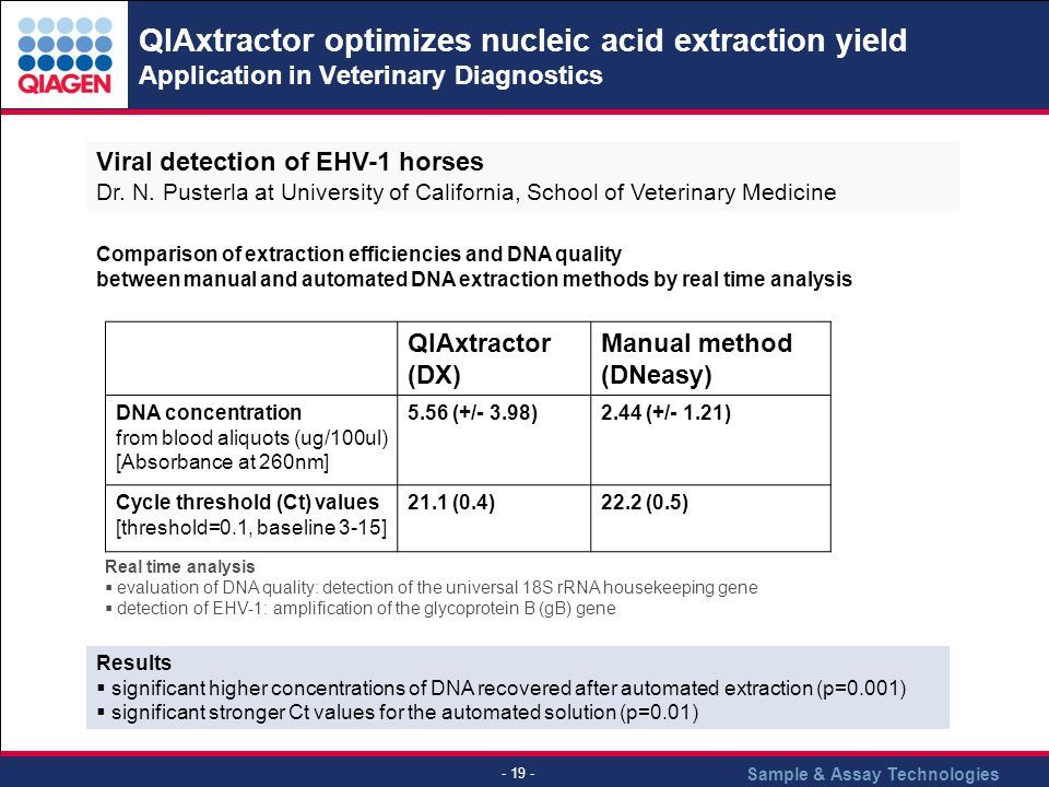 Sample & Assay Technologies - 19 - QIAxtractor optimizes nucleic acid extraction yield Application in Veterinary Diagnostics Results significant highe