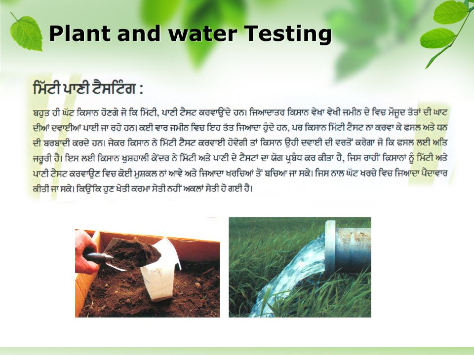 Plant and water Testing