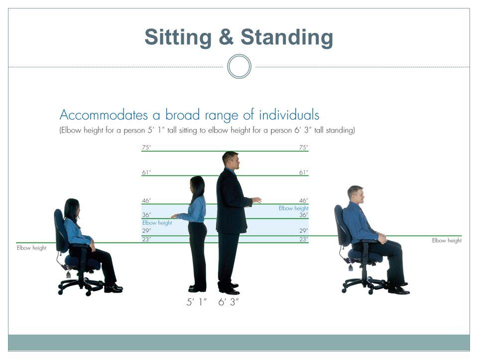 Sitting & Standing