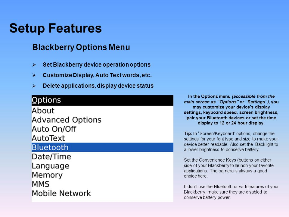 Setup Features Blackberry Options Menu Set Blackberry device operation options Customize Display, Auto Text words, etc.