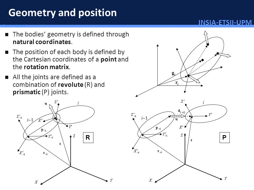 INSIA-ETSII-UPM 58/46 Deo omnis gloria! Geometry and position The bodies geometry is defined through natural coordinates. The position of each body is