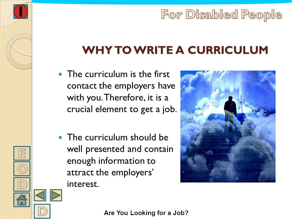 THE CURRICULUM VITAE In this part of the text we want to help you writing a curriculum able to express your job experiences and to underline your abil