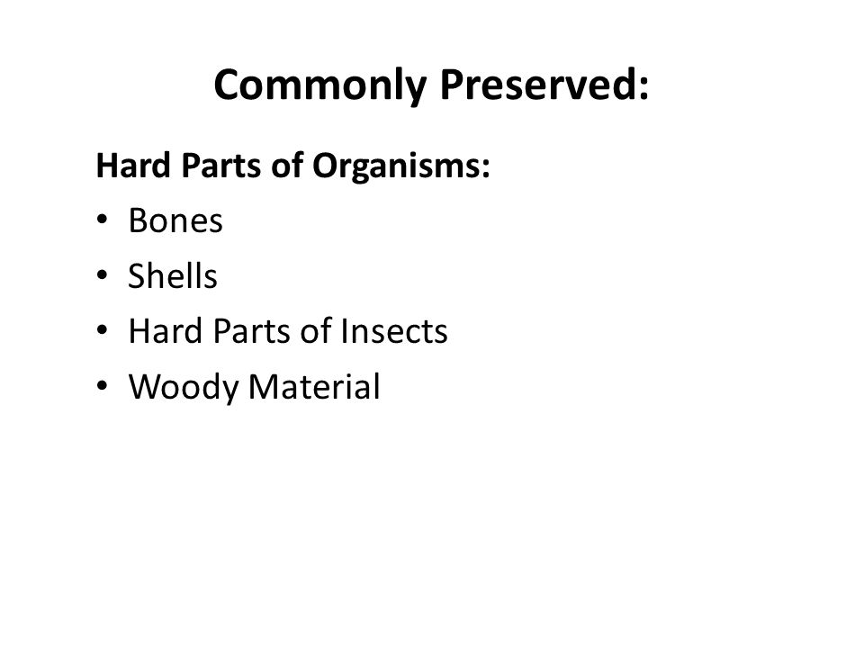 Commonly Preserved: Hard Parts of Organisms: Bones Shells Hard Parts of Insects Woody Material