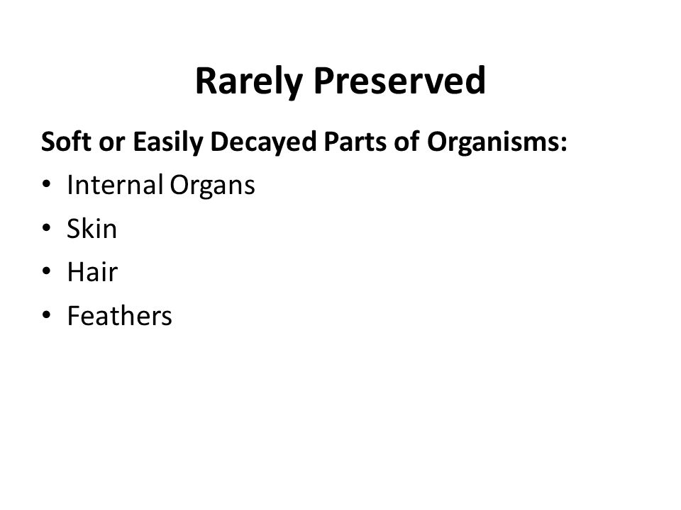 Rarely Preserved Soft or Easily Decayed Parts of Organisms: Internal Organs Skin Hair Feathers