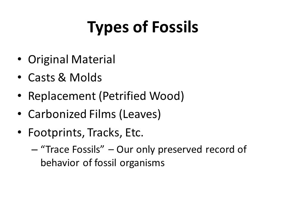 Types of Fossils Original Material Casts & Molds Replacement (Petrified Wood) Carbonized Films (Leaves) Footprints, Tracks, Etc.