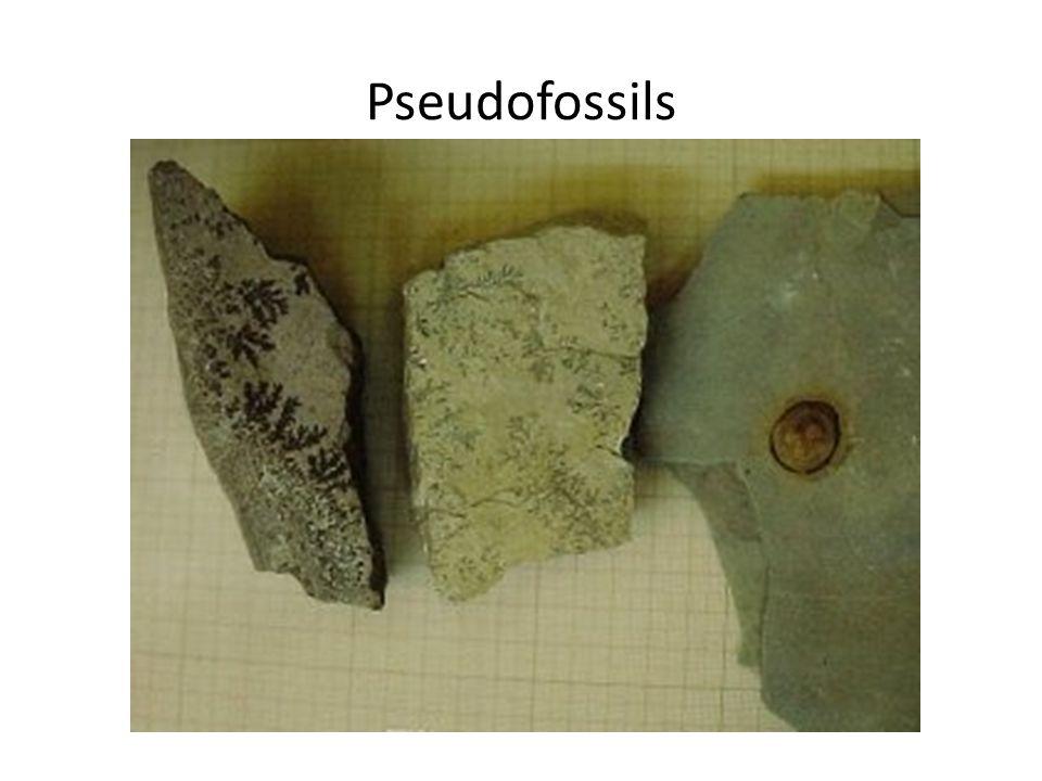 Pseudofossils