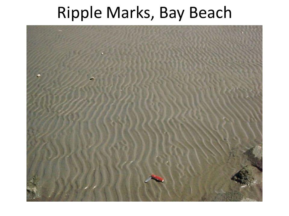 Ripple Marks, Bay Beach