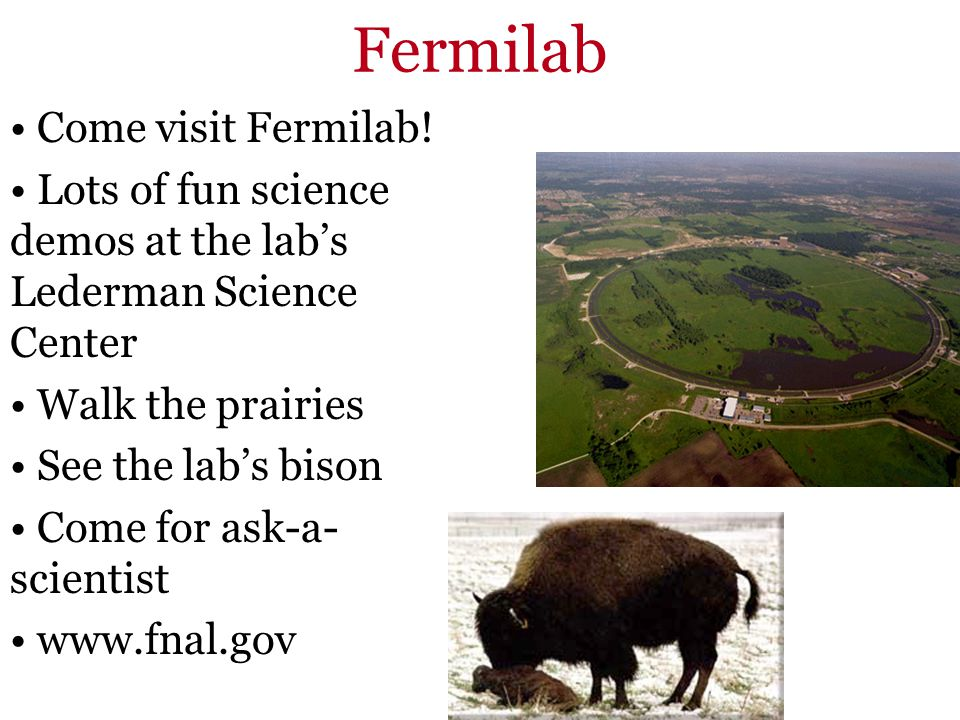 Fermilab Come visit Fermilab! Lots of fun science demos at the labs Lederman Science Center Walk the prairies See the labs bison Come for ask-a- scien