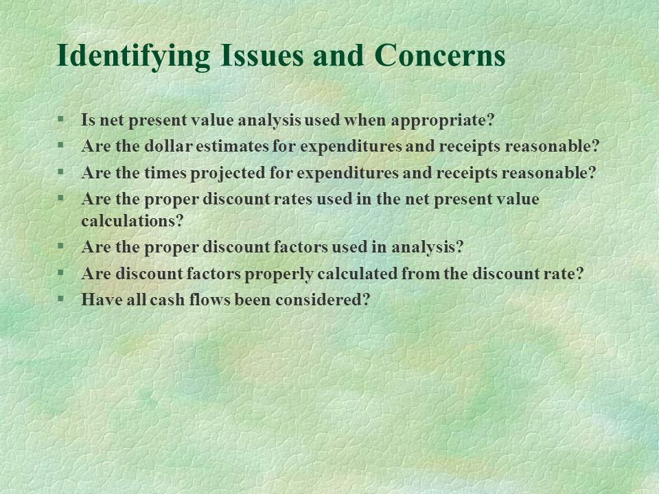 Identifying Issues and Concerns §Is net present value analysis used when appropriate.