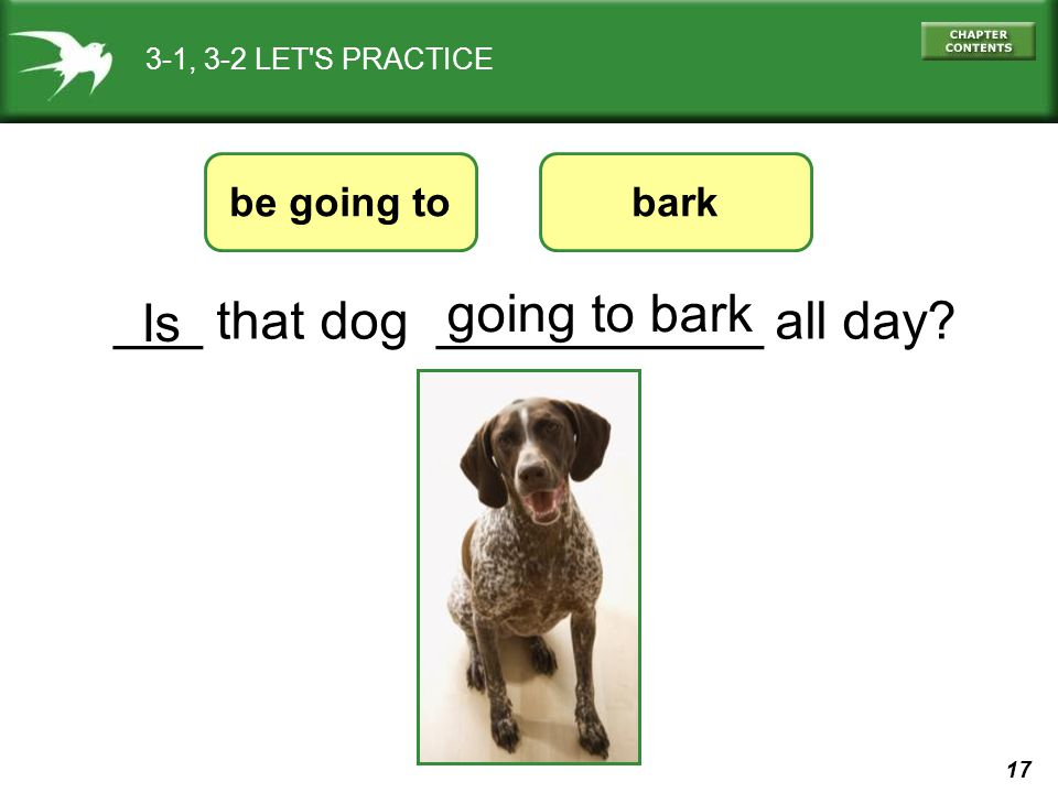 17 3-1, 3-2 LET'S PRACTICE ___ that dog ___________ all day? be going to going to bark bark Is