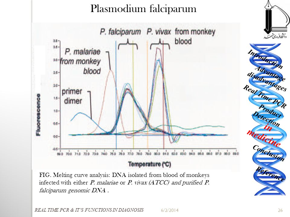 6/2/201426 Improving our understanding of the biology of the Plasmodium falciparum parasite is of extreme importance if we are to combat human malaria