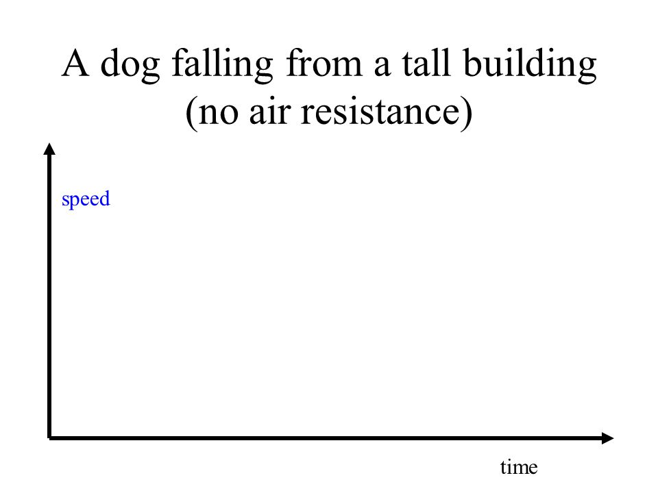 A dog falling from a tall building (no air resistance) speed time