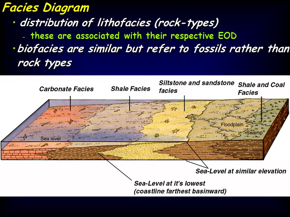 Facies Diagram distribution of lithofacies (rock-types) - - these are associated with their respective EOD biofacies are similar but refer to fossils