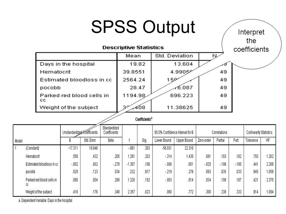 SPSS Screen