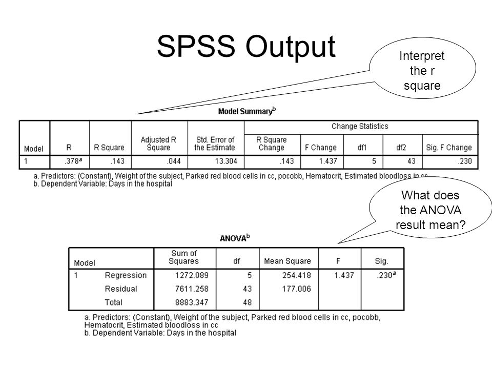 SPSS Output Interpret the coefficients