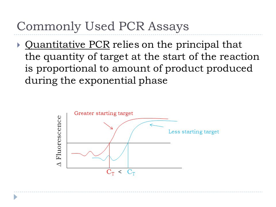 Commonly Used PCR Assays Quantitative PCR relies on the principal that the quantity of target at the start of the reaction is proportional to amount of product produced during the exponential phase Fluorescence CTCT CTCT Greater starting target Less starting target <