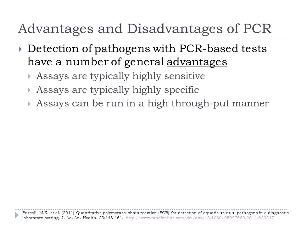 Advantages and Disadvantages of PCR Detection of pathogens with PCR-based tests have a number of general advantages Assays are typically highly sensitive Assays are typically highly specific Assays can be run in a high through-put manner Purcell, M.K.