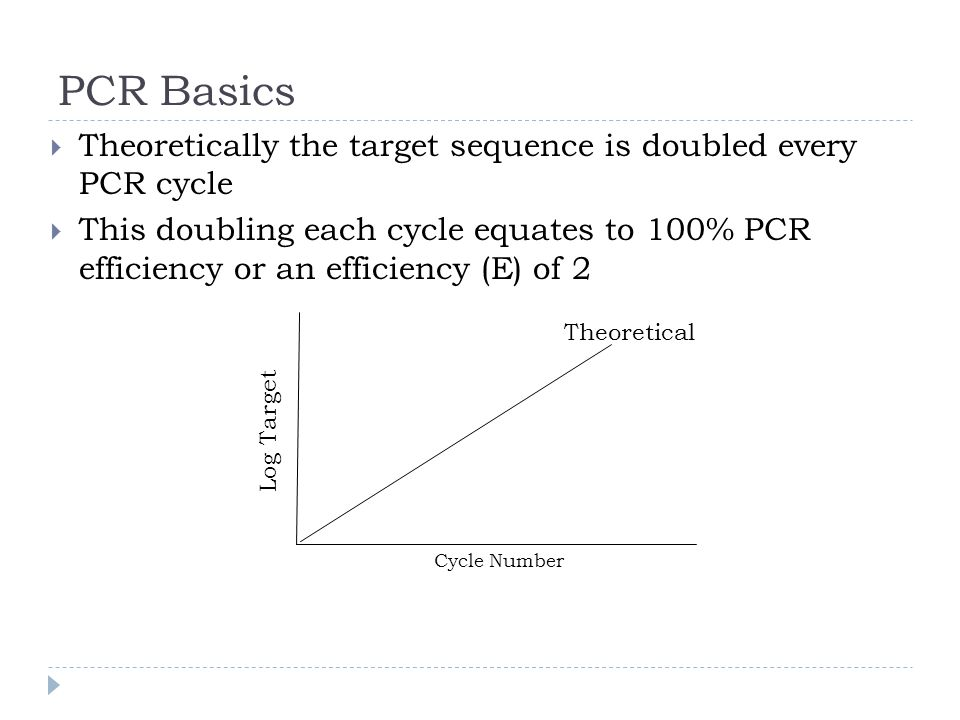 PCR Basics Theoretically the target sequence is doubled every PCR cycle This doubling each cycle equates to 100% PCR efficiency or an efficiency (E) of 2 Log Target Cycle Number Theoretical